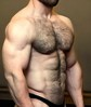HairyMuscleWrestler